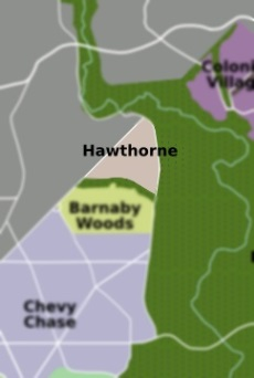 Locksmith Hawthorne DC