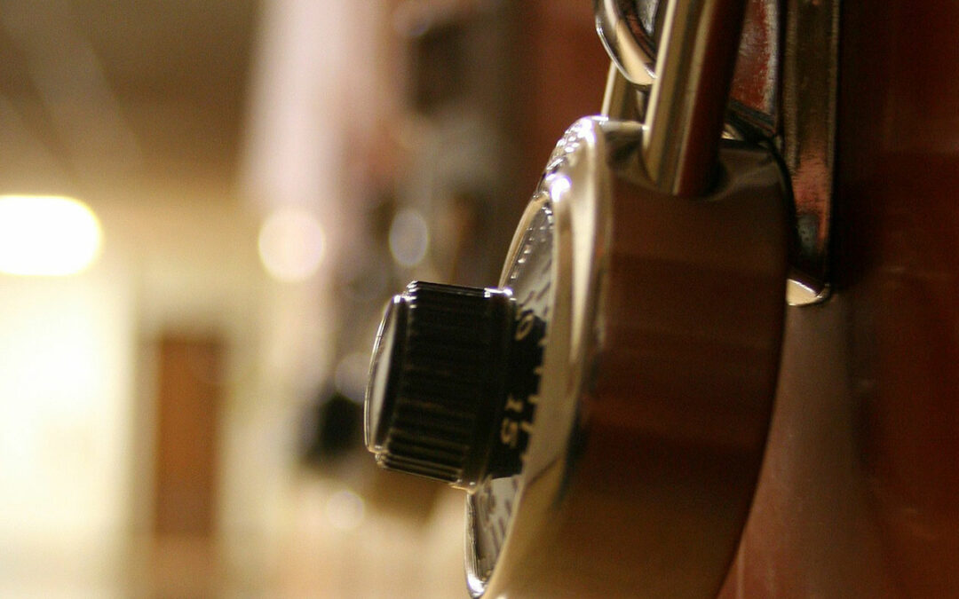 The 16 Locks Every Home Should Have in Case of Emergency